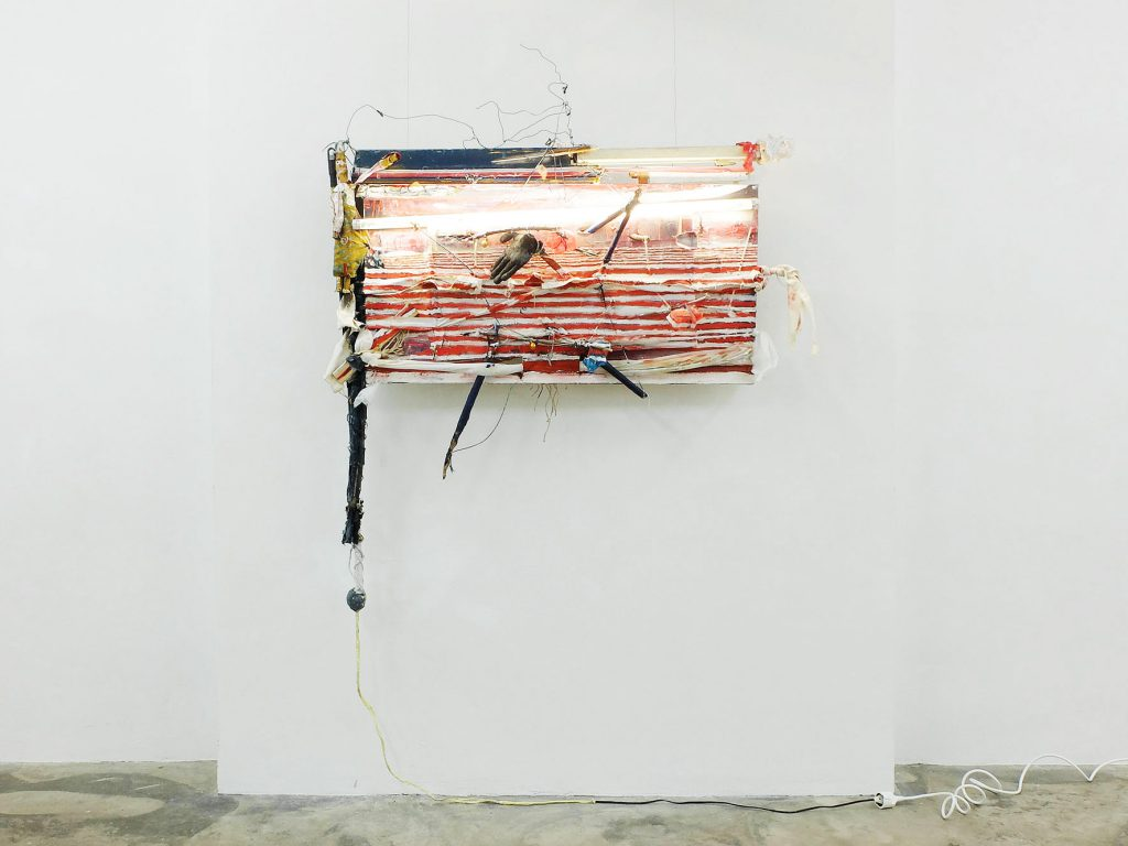Fucked up Flag, 2014